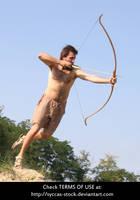 Robin Hood 14 by syccas-stock