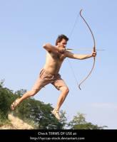 Robin Hood 11 by syccas-stock