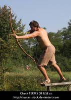 Robin Hood 20 by syccas-stock