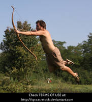 Robin Hood 19 by syccas-stock