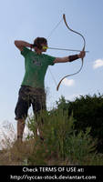 Male Archer 11 by syccas-stock