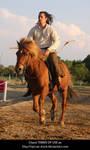 Horseback Archer 5 by syccas-stock