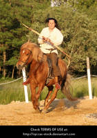 Horseback Archer 9 by syccas-stock