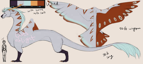 Dragon types concept - Wind