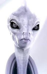quarta-dimensione's Profile Picture