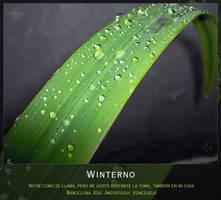 Winterno