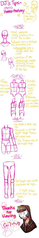 DJ's tips: Human Anatomy by DrawingJockey