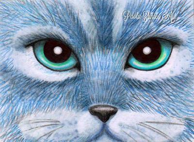 Russian Blue by PaolaZunico