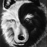 Yin Yang Wolf by peacewolf4