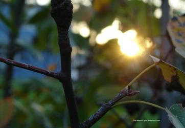 nature shot2012