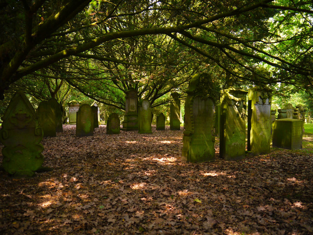 cemetery in the forest - photo #9