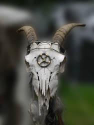 Fantasy Skull 1 by Dragoroth-stock