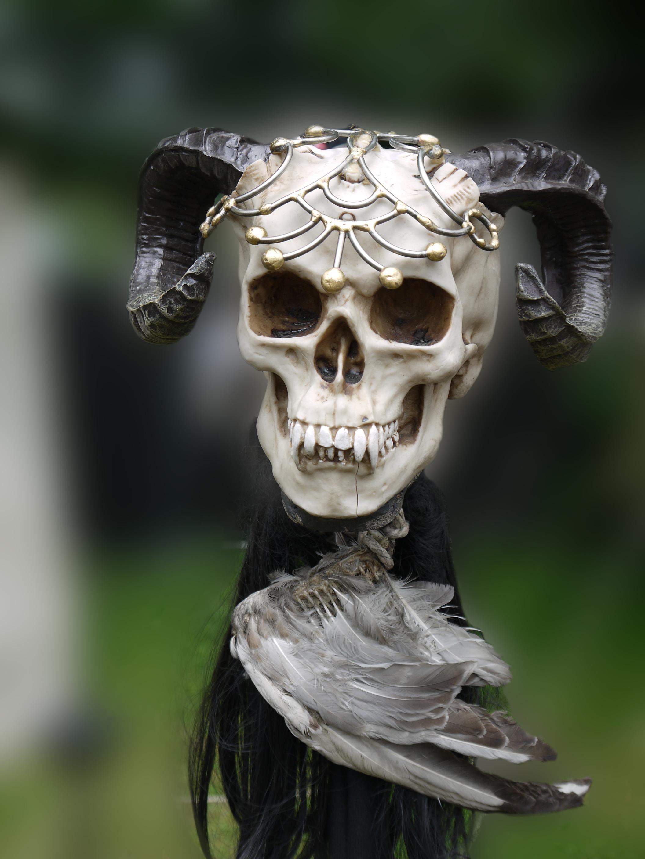 Fantasy Skull 2