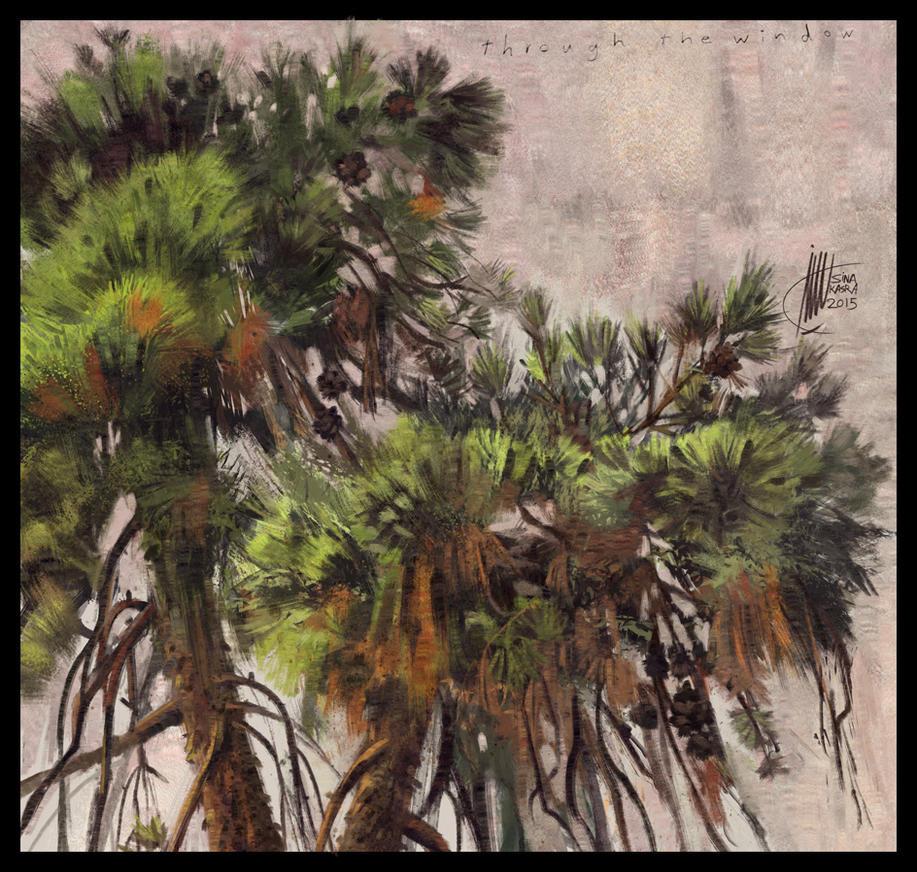 Through the Window (Pine Trees) by sinakasra