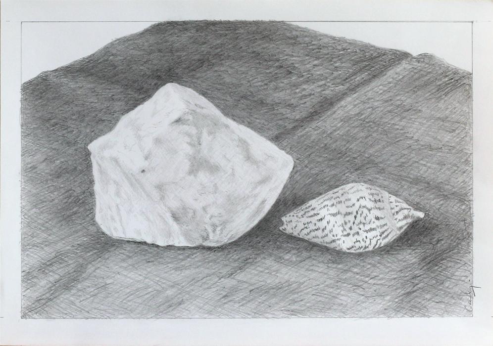 'Still Life _ Quartz Rock and Seashell' by Denish-C
