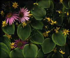 NoVa Garden No. 6