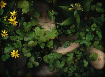 Summer Garden No. 24