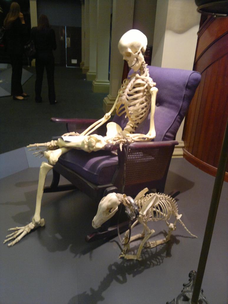 skeleton in sitting chair by karlie alinta on deviantart