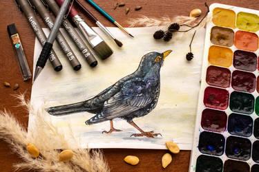 Day #8: Common blackbird (Turdus merula) by Firesoul-LV