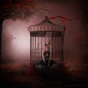 Please, set me free