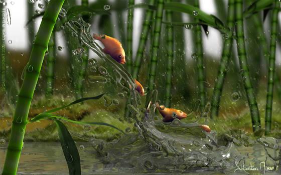 poissons sous la pluie