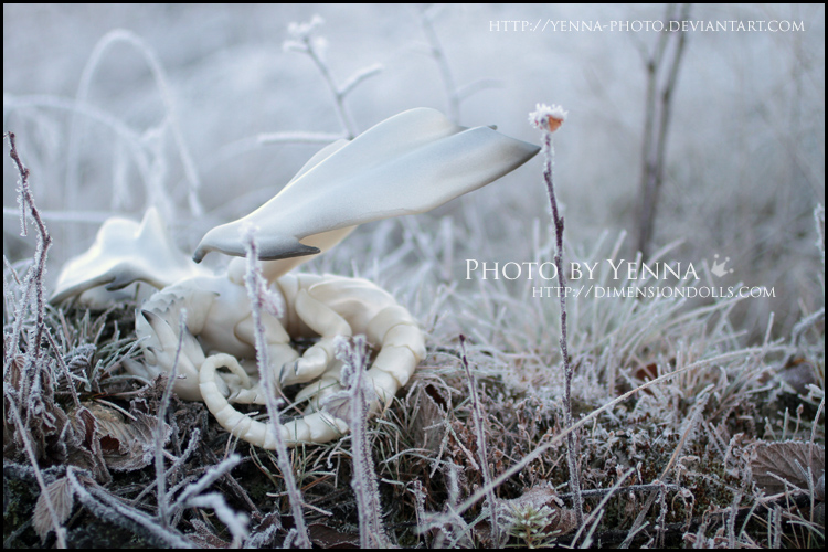 Frosted Sleep by yenna-photo