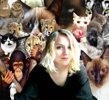 Power of Cats II by HeYaA