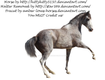 Grey Horse PRECUT