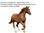 Sorrel/Chestnut Horse Precut