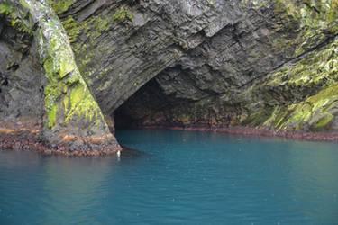 Newfoundland by consideritfox
