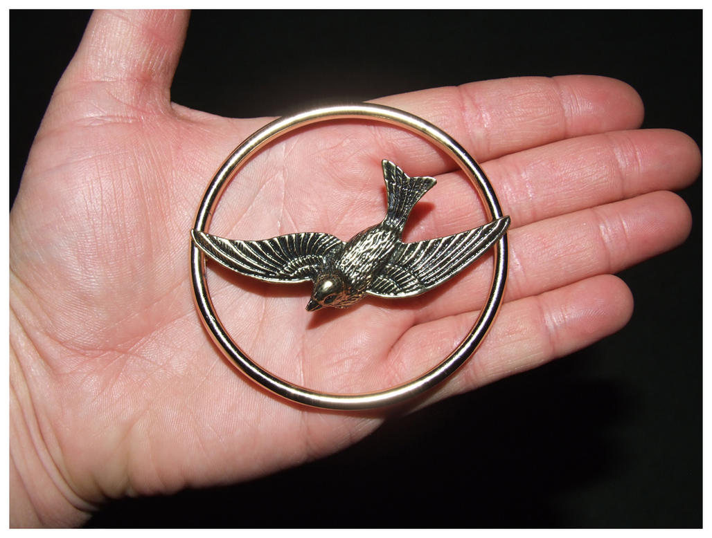 Mocking jay pin hunger games by edi snaps on deviantart mocking jay pin hunger games by edi snaps buycottarizona Gallery