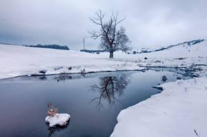 Cloudy Winter Day by alex1nax