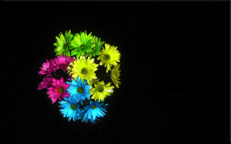 bouquet by jaidaksghost