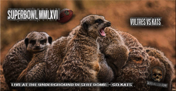 Superbowl - Meerkats vs Vultures