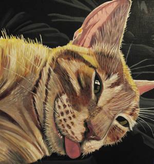 Cat Tongue