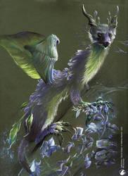 Glycine dragon