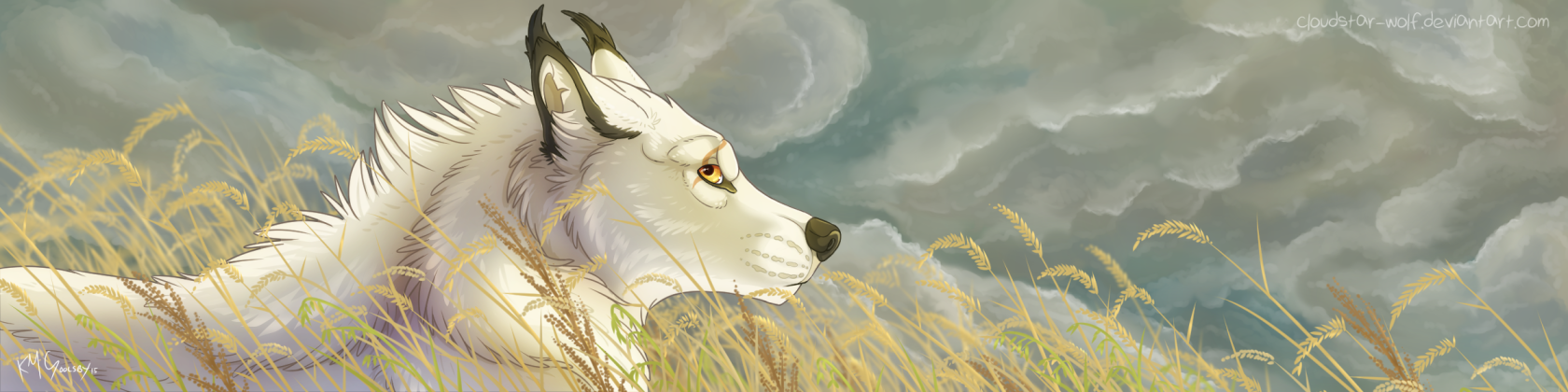 cloudstar-wolf's Profile Picture