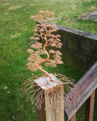 Large Copper Wire Bonsai Tree Art Sculpture by WhisperingWillowArt