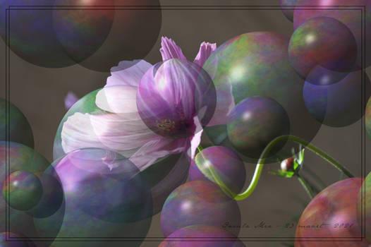 ParticlesTruSphereMap.DN.FC.Flower.IM