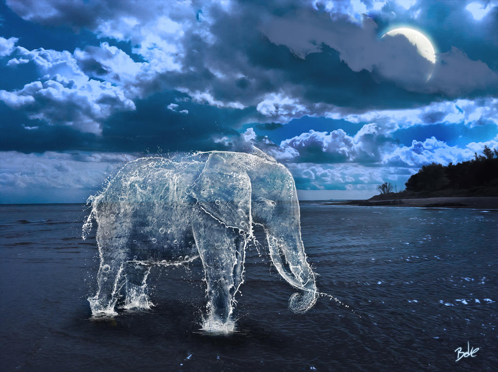 Water Elephant by B-O-K-E