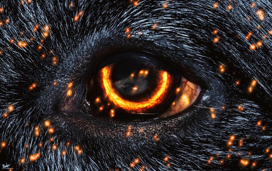 Burning Eye by B-O-K-E