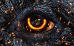 Burning Eye