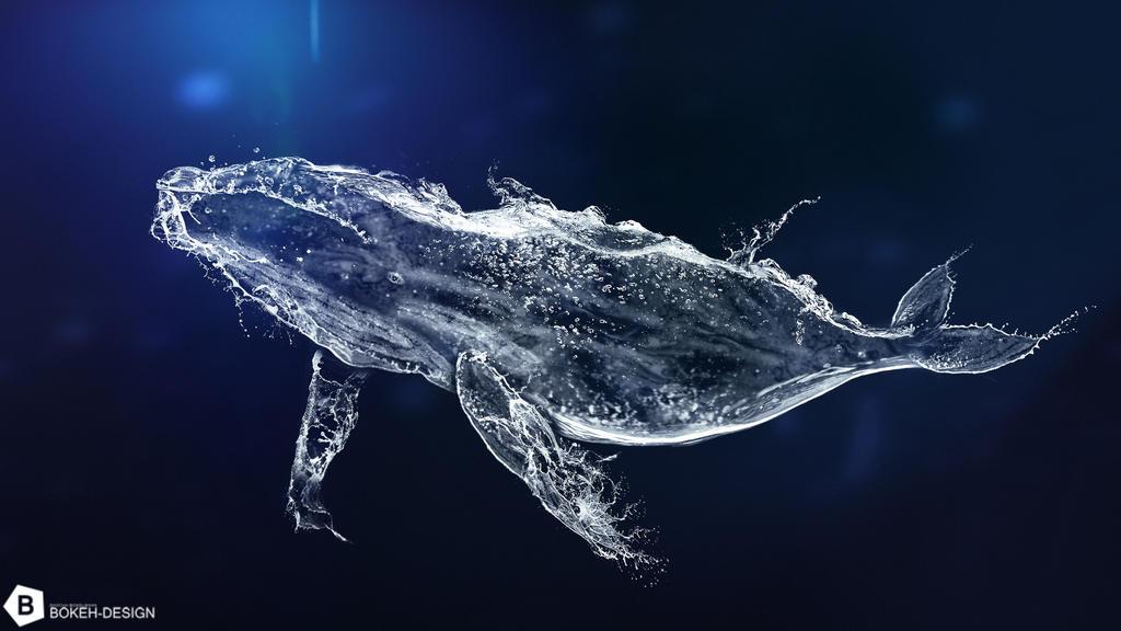 Water Whale by B-O-K-E
