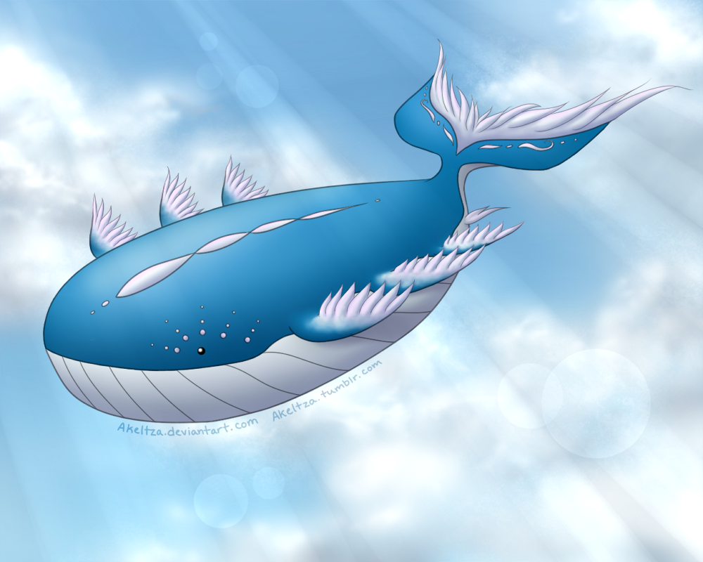 This Is The Only Acceptable Form Of Mega Wailord Pokemon