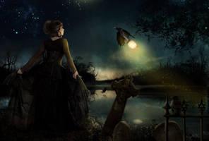 LightCarrier by KarinClaessonArt