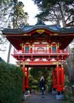 at the Japanese Tea Garden