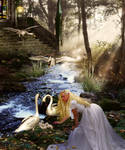 The Swan Protector