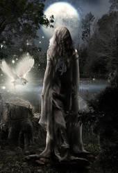 In The Moonlight by KarinClaessonArt