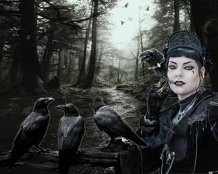 The Raven Caretaker