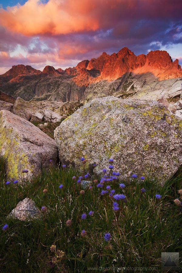 Mountain Paradise by davidrichterphoto